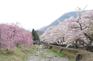 箱根宮城野