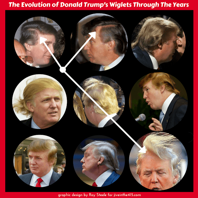 Nine photographs of Donald Trump's hair (wiglets) over the last forty years.