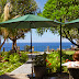 Funchal é destino em alta no TripAdvisor