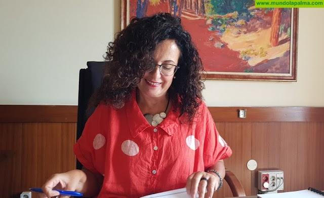 El Cabildo encomienda el Gobierno de Canarias la adaptación del Plan de Residuos a las directrices europeas