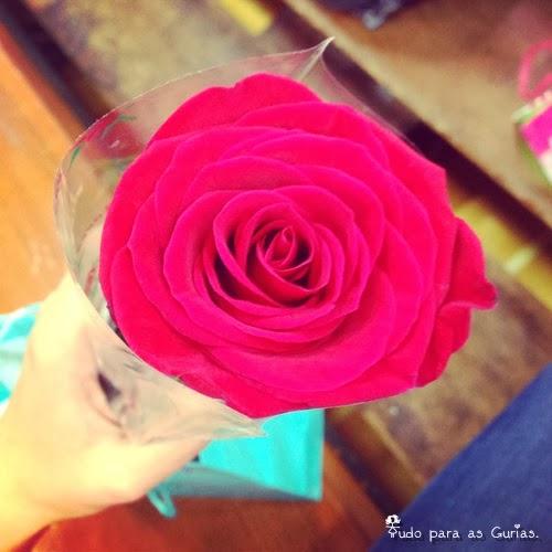 Especial: Outubro Rosa; flor rosa