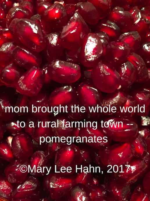 A year of reading poetry friday pomegranates poetry friday pomegranates this is one of my favorite haikuforhealing for the week and i thought it would make a perfect visual for our tumblr roundup sciox Choice Image
