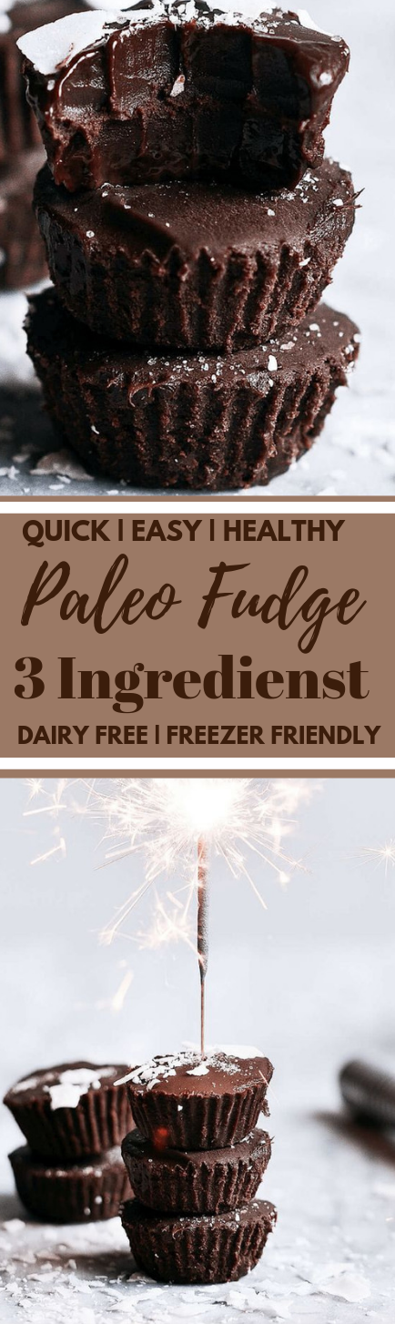 Healthy 3 Ingredient Paleo Dairy Free Fudge #dessert #paleo