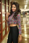 shalu chaurasiya latest sizzling pics-thumbnail-15