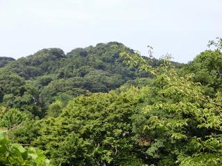 浄妙寺裏山