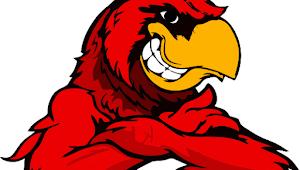 Logo Garuda CDR