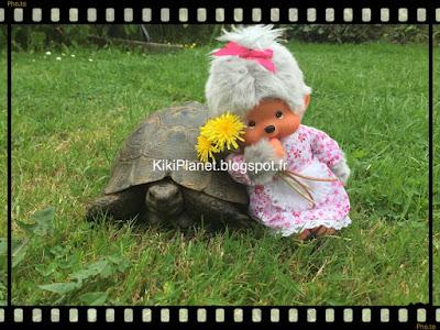 kiki monchhichi tortue