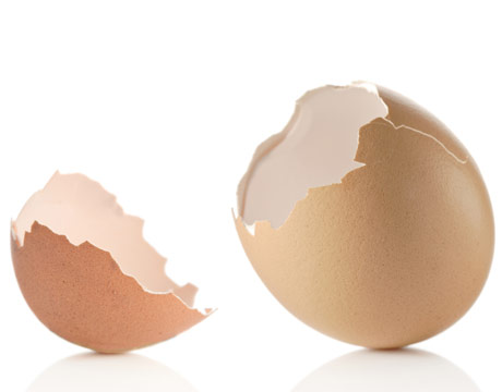 Benefit Of Plants: Eggshell For Beauty Face
