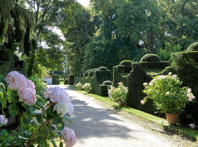 Passeio romântico pelo jardim de Schönbrunn