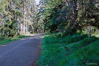 South Hoypus Trailhead
