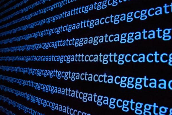 「ダーウィン進化論」完全論破!! AIが「人類には謎の祖先がいる」とゲノム解析で明らかにwww