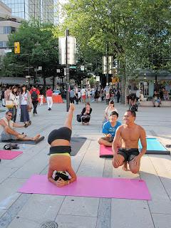 adventures of edrocker popup yoga