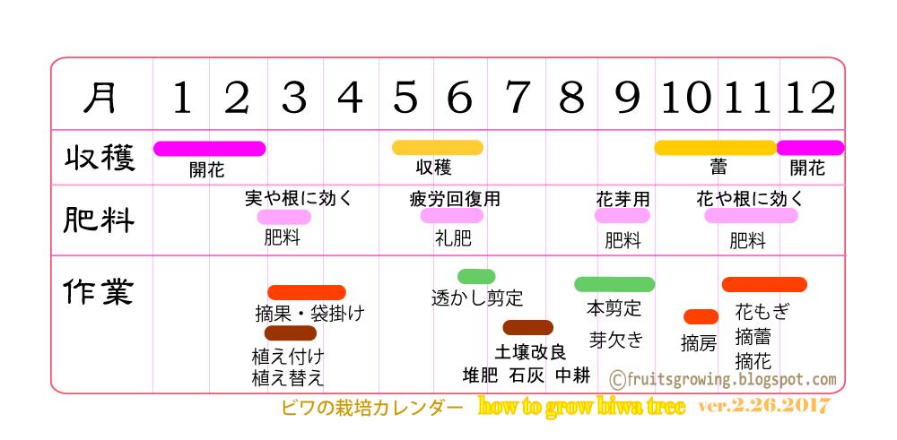 ビワの育て方 栽培カレンダー