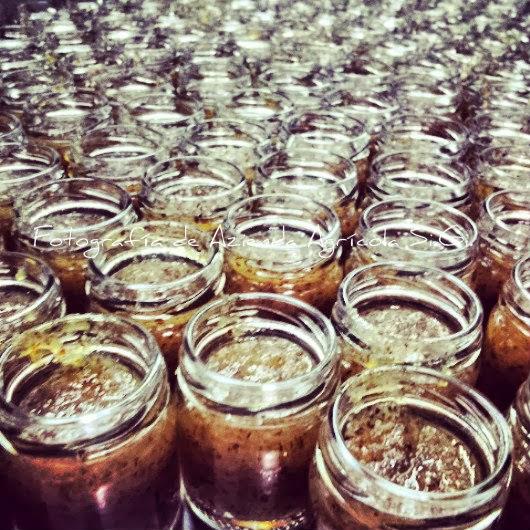 mermelada de azufaifa, azufaifa, azufaifo,Si.Gi., azienda agricola Si.Gi., La tienda de la hoja