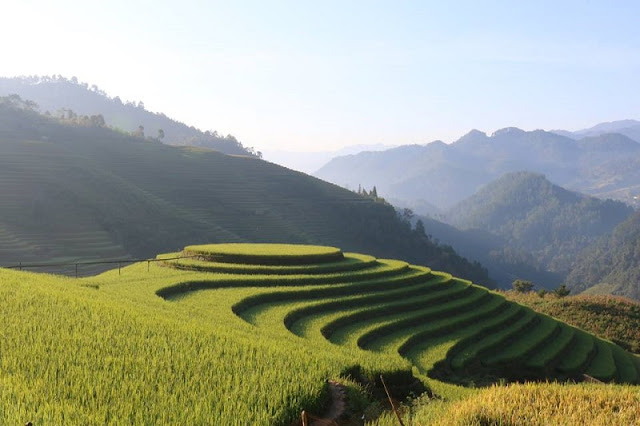 Mu Cang Chai - A special highlight of the mountainous region of North Vietnam