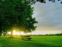 Manfaat Sinar Matahari Bagi Kesehatan