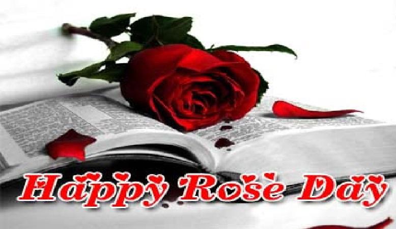 Rose Day 2018 wallpaper