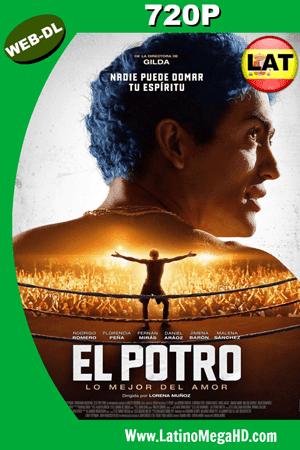 El Potro: Lo mejor del amor (2018) Latino HD WEB-DL 720P ()