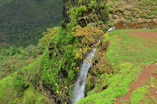 Jyoti's Pages: Capturing the Waterfall ~ Mahabaleshwar for Saturday Snapshot