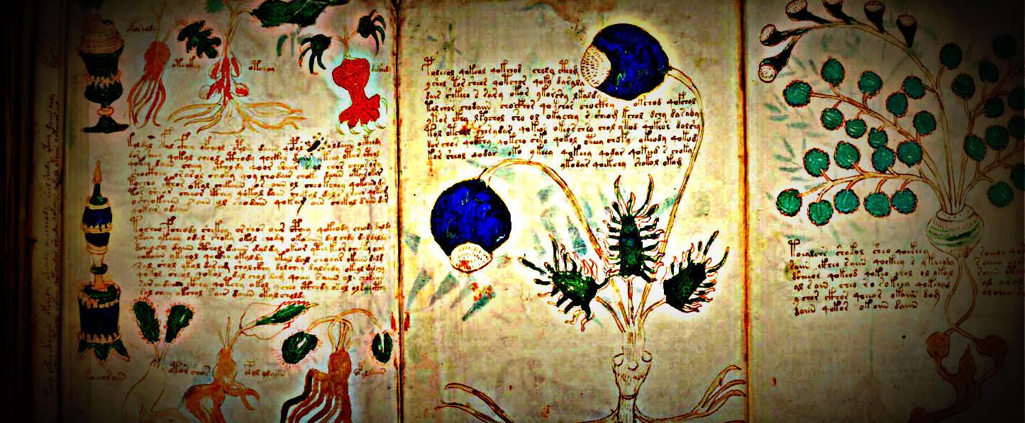 Meu mundo e assim: O manuscrito misterioso de Voynich