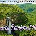 अमेज़न वर्षावन से जुड़े 20 अनोखे रोचक तथ्य और दिलचस्प जानकारी Interesting Amazon Rainforest Facts And Information Hindi