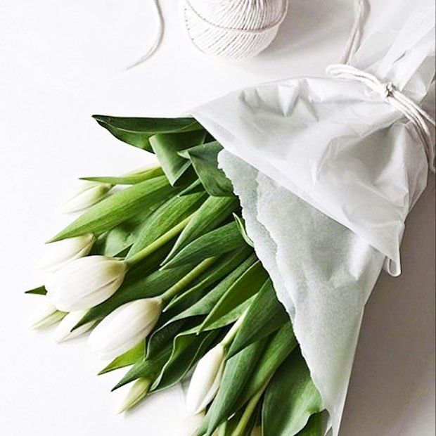 white tulip on cool chic style fashion
