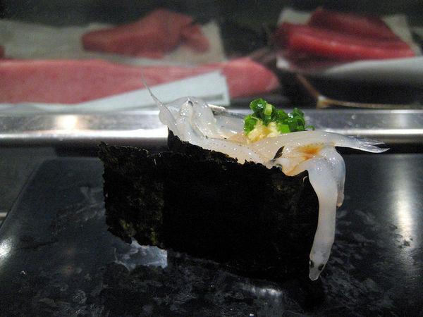 ซูชิหน้าปลาข้าวสาร, ชิราสึ (Shirasu)
