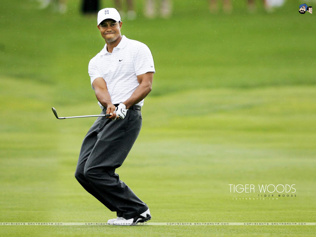 Tiger woods bisexual