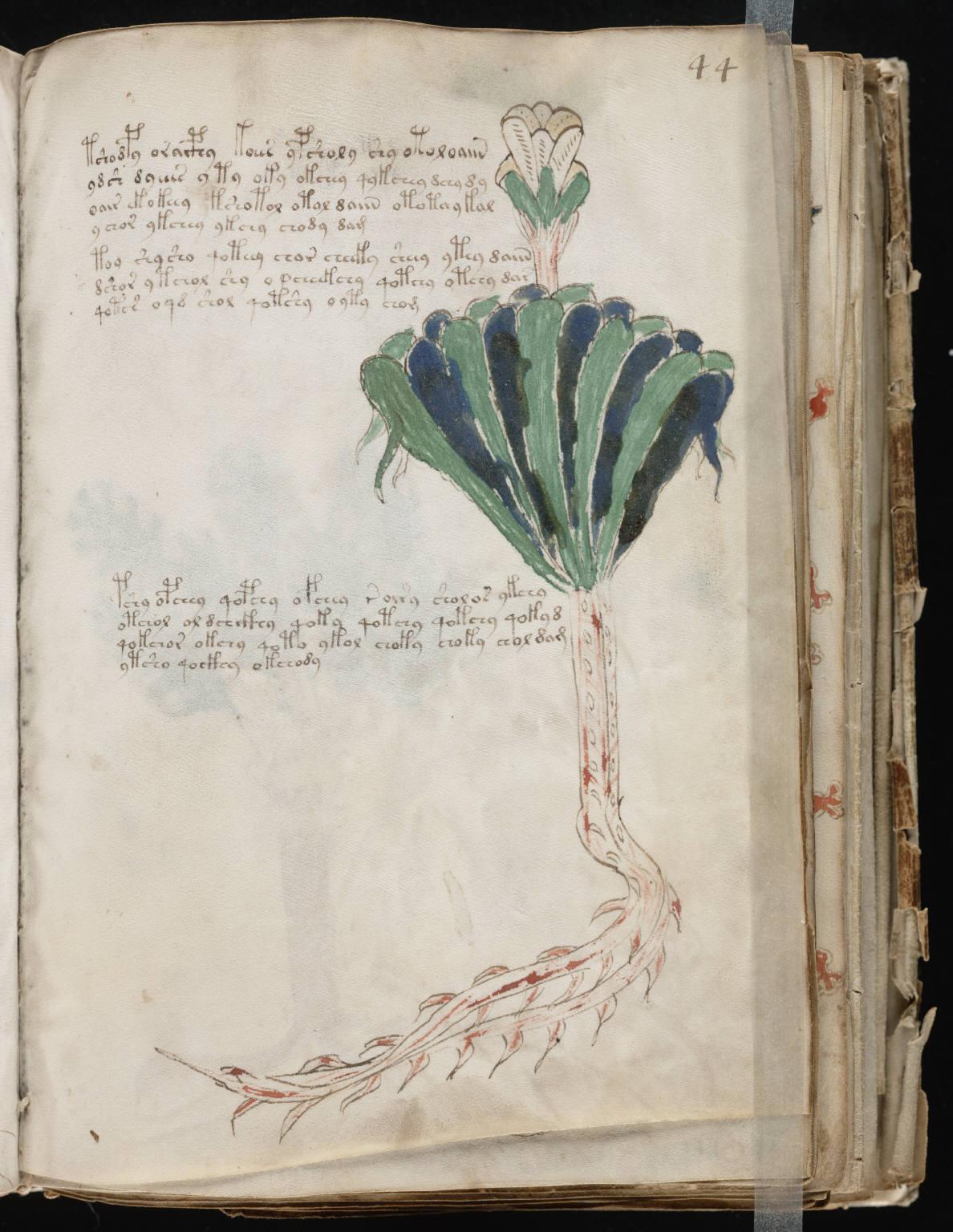 manuscrito085