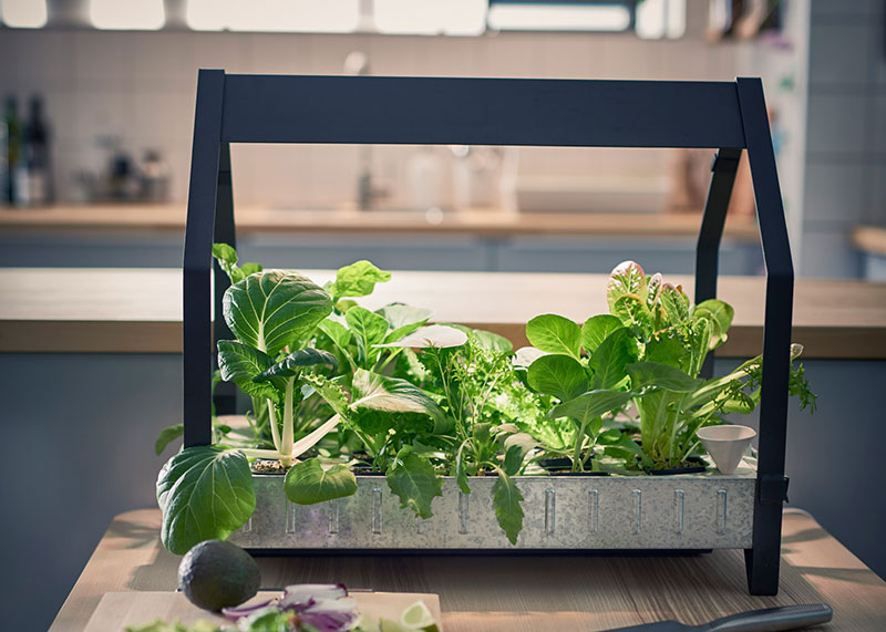 Hydroponic Gardening Made Simple by Ikea