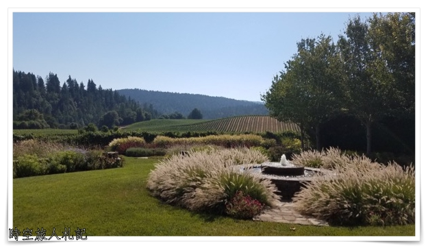 Anderson valley 品酒 Goldeneye winery view