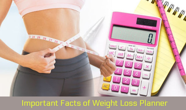 Important Facts of Weight Loss Planner