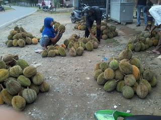 Lhoong dikenal dengan sebutan buah durian