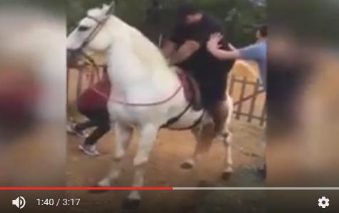 Αυτοί οι τύποι πρέπει να γεννήθηκαν καβάλα στο άλογο ή να κατάγονται από τους Αρχαίους Σκύθες, τους πιο δεινούς ιππείς της αρχαιότητας...Video
