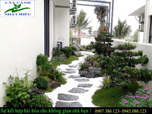 Thiết kế sân vườn biệt thự đẹp tại Hà Nội