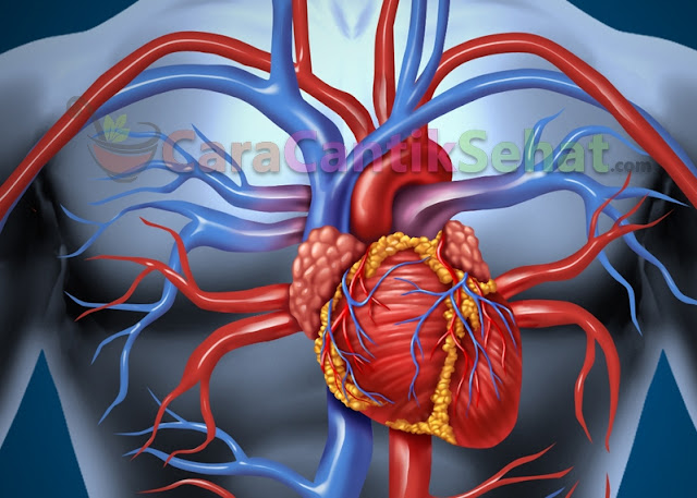 Olahraga Sehat Bagi Penderita Jantung Koroner