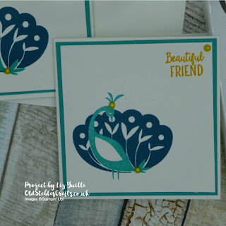 Beautiful Peacock Sale a bration mini card