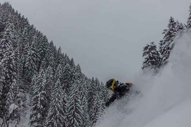 Freeride Inc. Austria