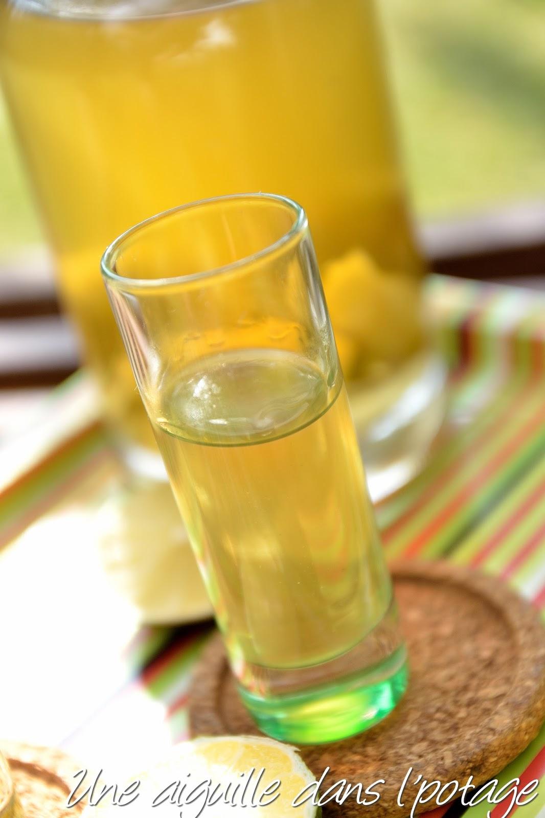 Bien connu une aiguille dans l' potage: Rhum arrangé citron vert- gingembre ZQ33