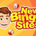 World Best Online Top Bingo Sites Review