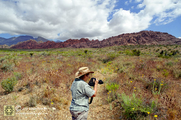 Nature Photographer Bonnie Rannald at Red Rock Canyon