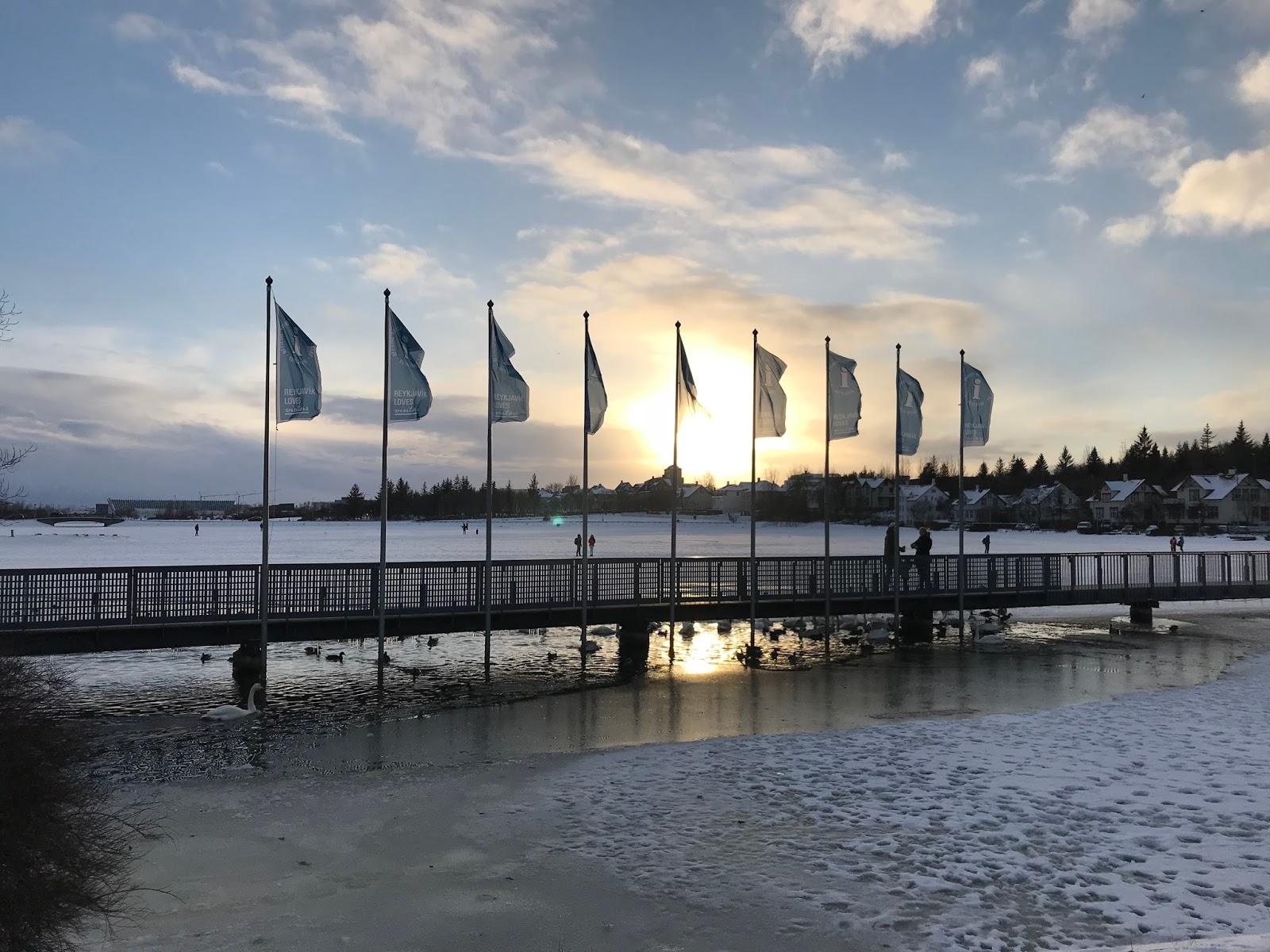 Image of Lake Tjornin in Reykjavik
