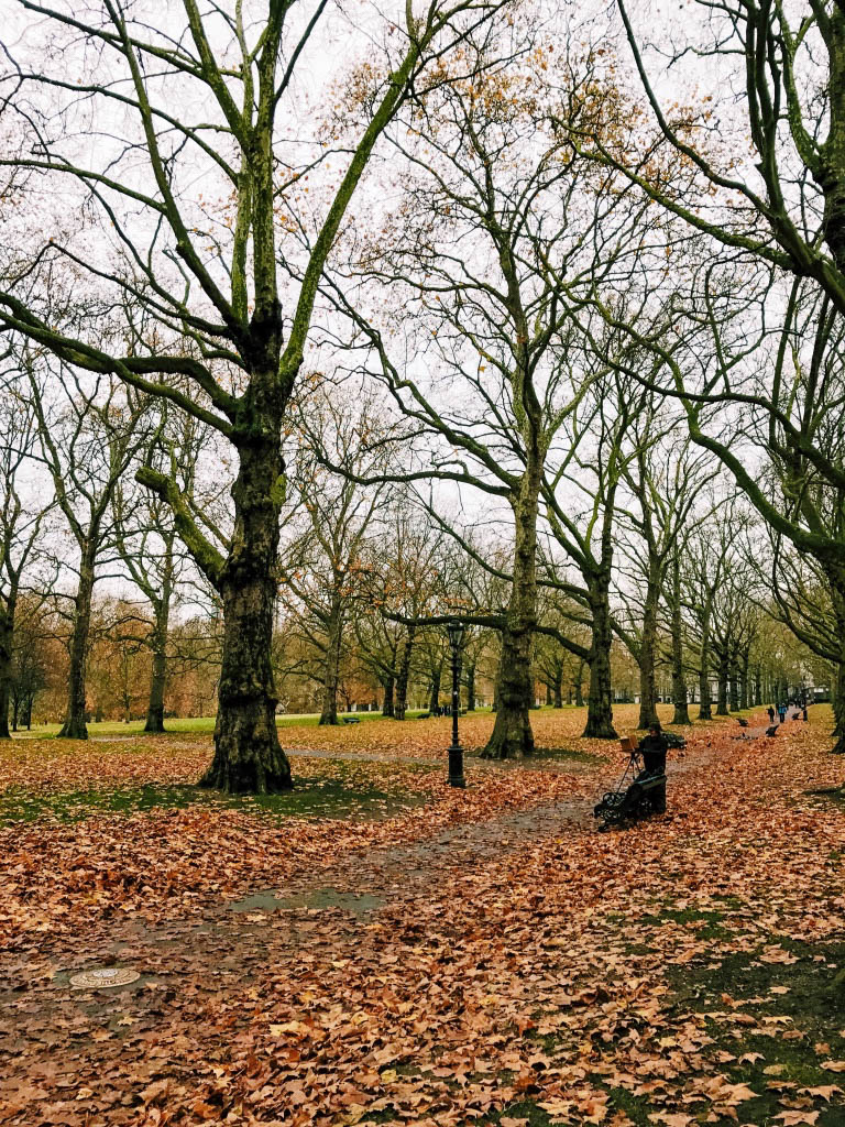 Green Park, London in autumn