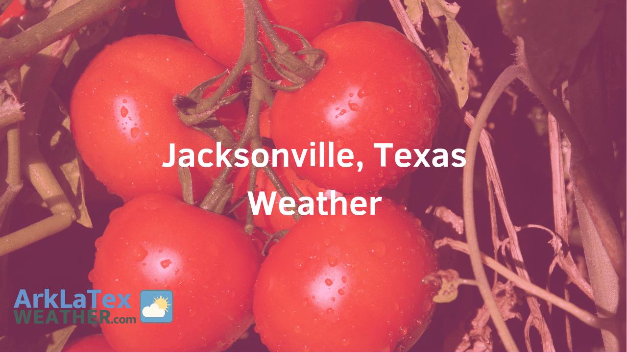 Jacksonville, Texas, Weather Forecast, Cherokee County, Jacksonville weather, JacksonvilleTomato.com, ArkLaTexWeather.com
