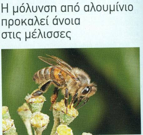 Η μόλυνση από αλουμίνιο προκαλεί άνοια στις μέλισσες: Κάποιος τα έλεγε από καιρό αλλά δεν τον ακούσαμε...