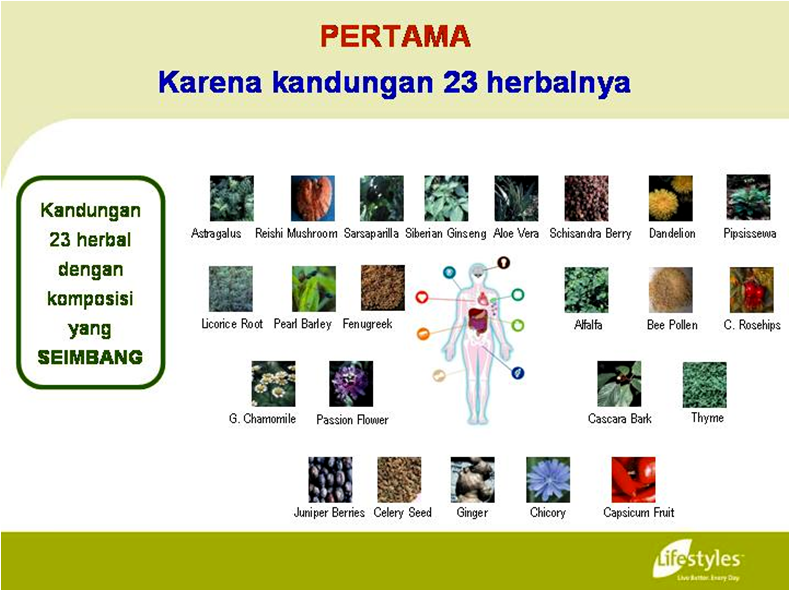 INTRA - Suplemen Herbal Terbaik | INTRA Lifestyles Indonesia