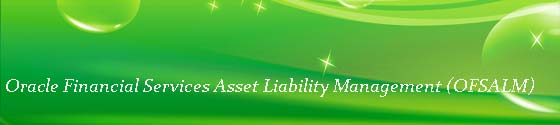 Oracle Financial Services Asset Liability Management (OFSALM)