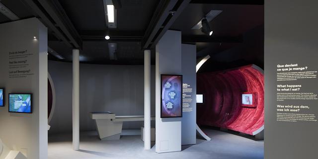 parcours interactif multimédia du musée 3 secteurs