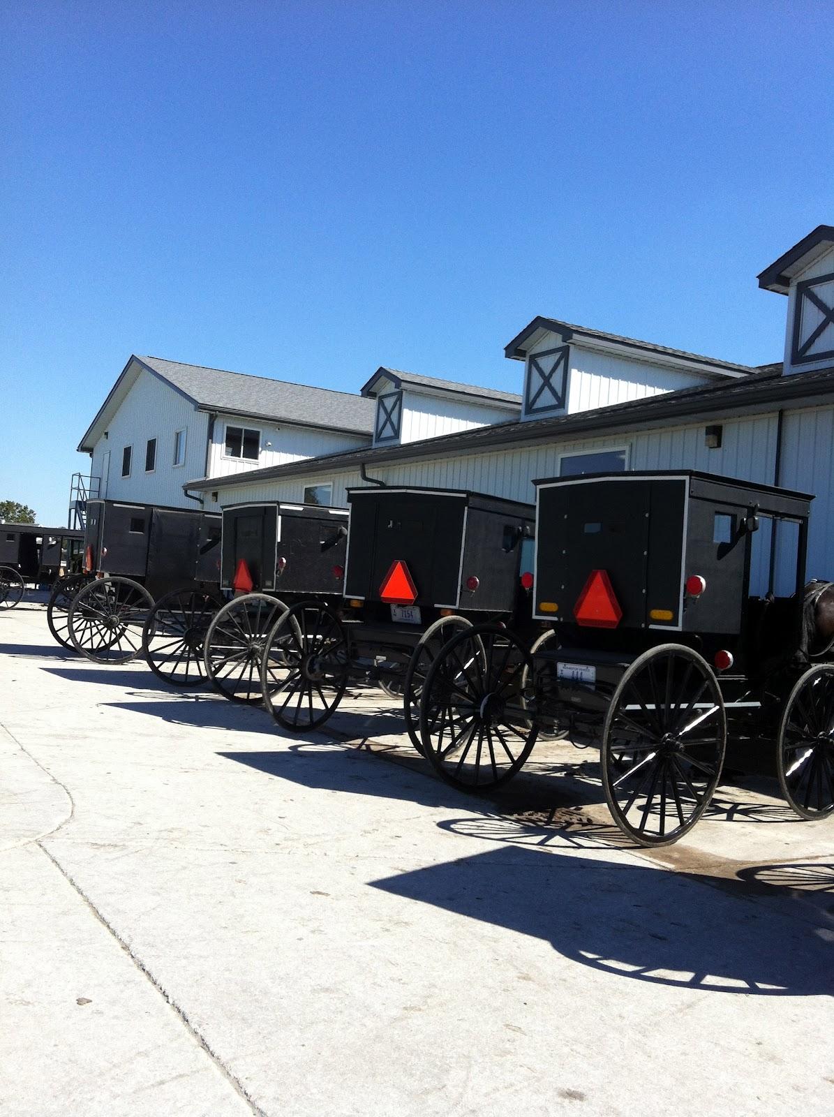 Team Breitmann World Tour Indiana Amish Country Embrace