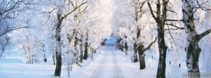 My Fb Covers Winter Wonderland Facebook Cover